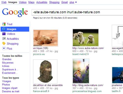 Exemple de recherche de hotlink par Google