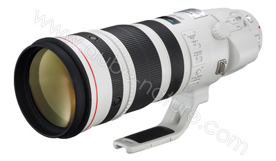 Canon 200-400/4 L IS USM