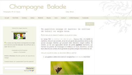Champagne Balades, le blog