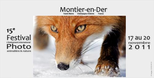 Festival de Montier-en-Der 2011