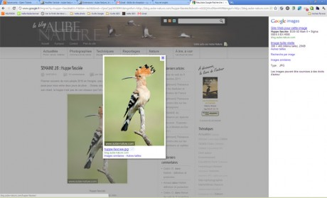Google Images en action