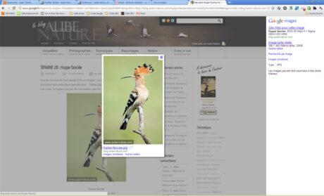 Google Images en action